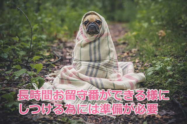 犬 留守番 長時間
